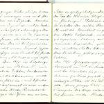 Tagebuchaufzeichnungen Reinhold Sieglerschmidt (7), item 20