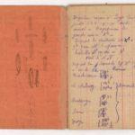 FRBNSA-080 Léo Lasserre, carnet de guerre, item 8